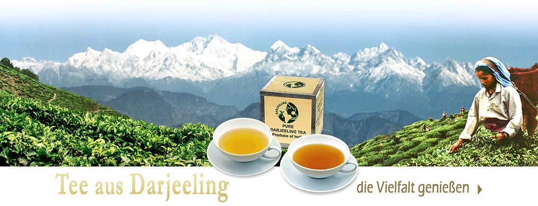 banner Darjeeling-Tee