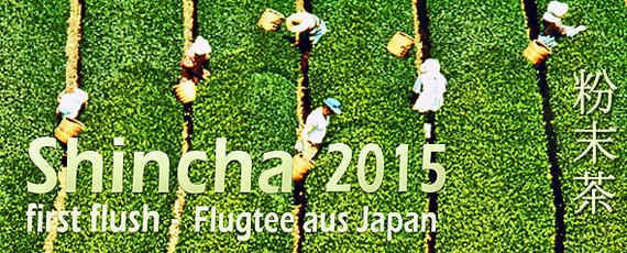 Japan Shincha-2015 Ebino kbA.