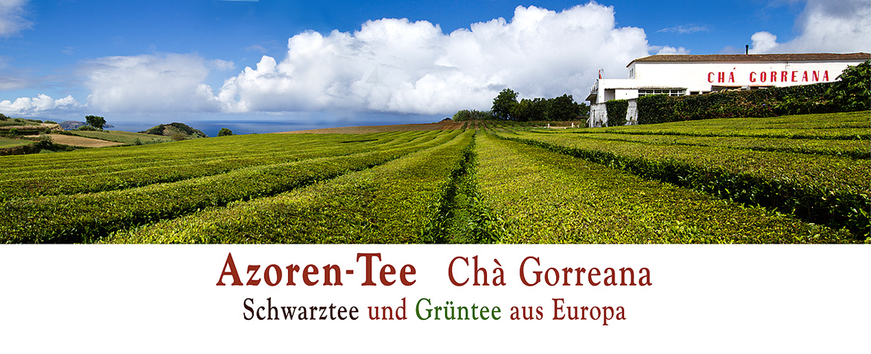 banner Azoren Gorreana Tee 2020