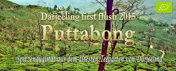 FLUGTEE-2015 Darjeeling first-flush kbA. SFTGFOP1 Puttabong Dj30